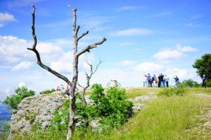 Der Wanderweg Sauerland Waldroute führt wenige Gehminuten an unserer Ferienwohnung vorbei